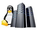 Linux Dedicated Server Features...