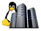Linux Hosting Services